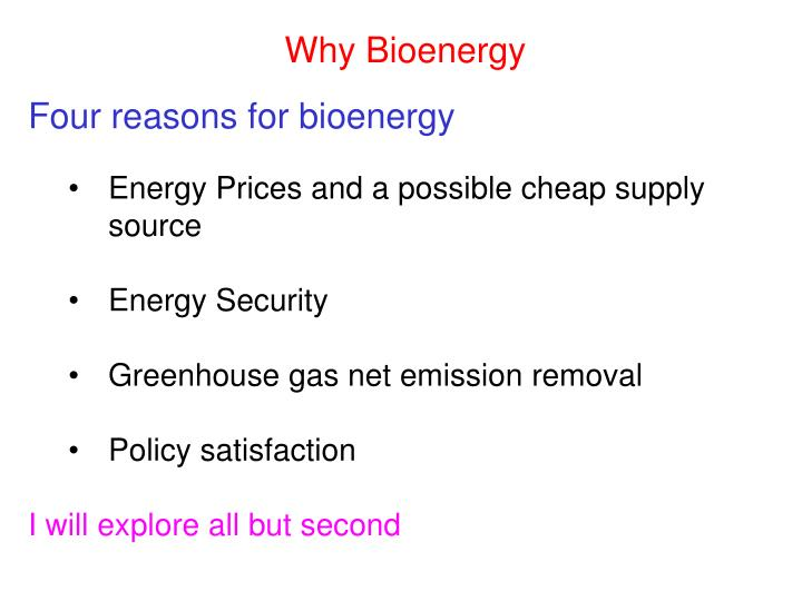 Four reasons for bioenergy