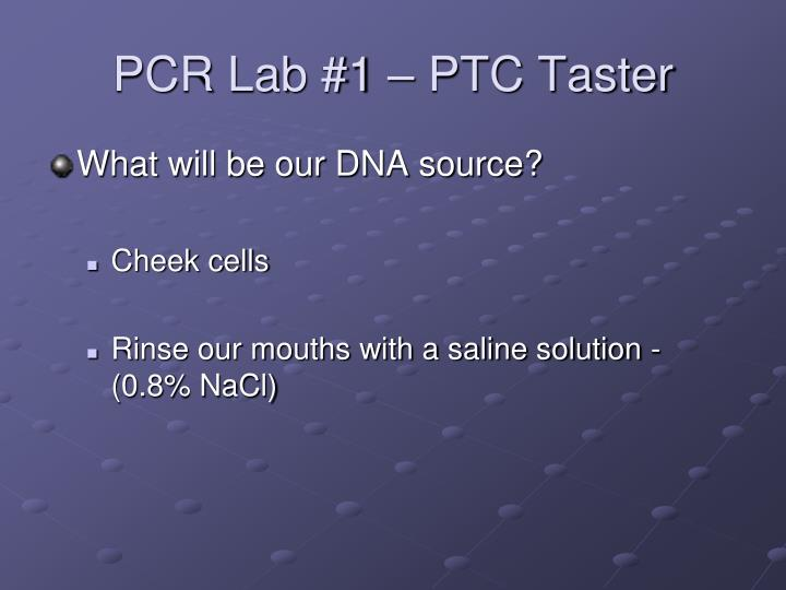 PCR Lab #1 – PTC Taster