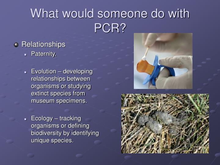 What would someone do with PCR?