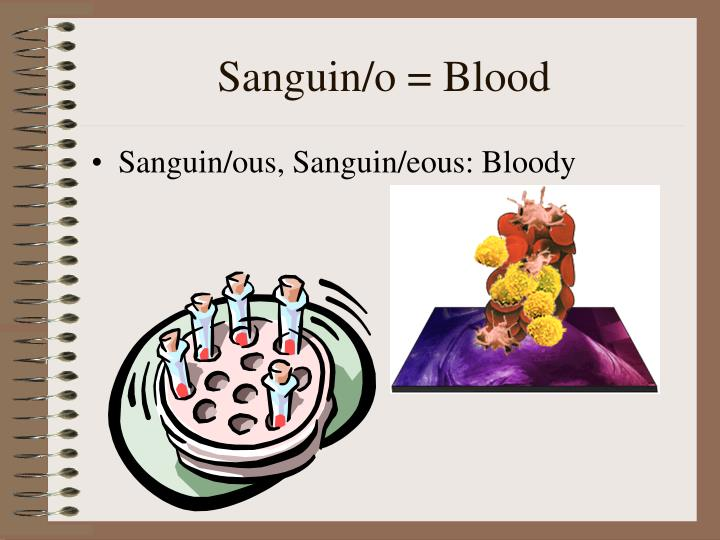 Sanguin/o = Blood
