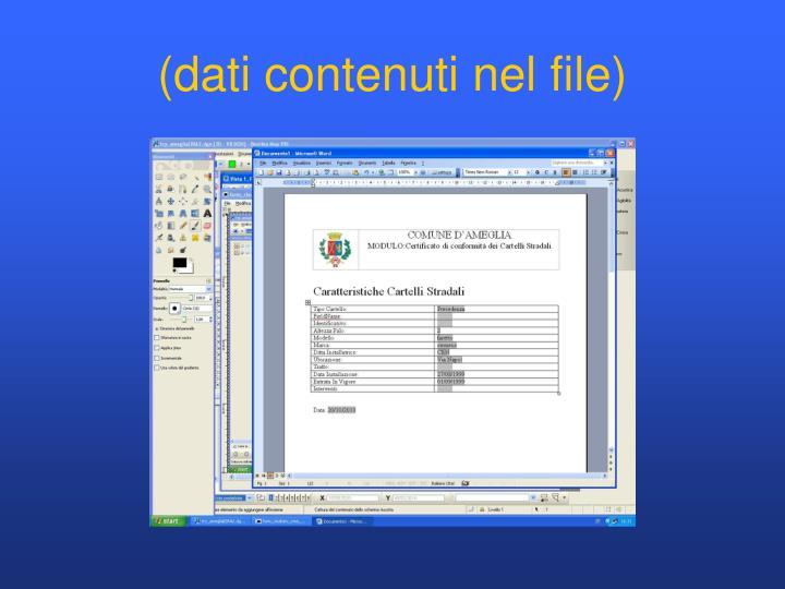 (dati contenuti nel file)
