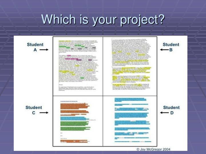Which is your project?