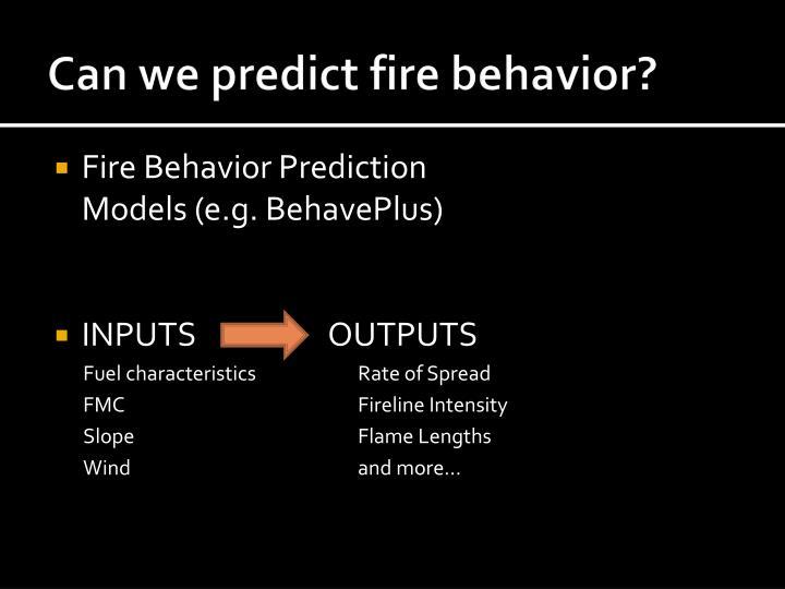 Can we predict fire behavior?