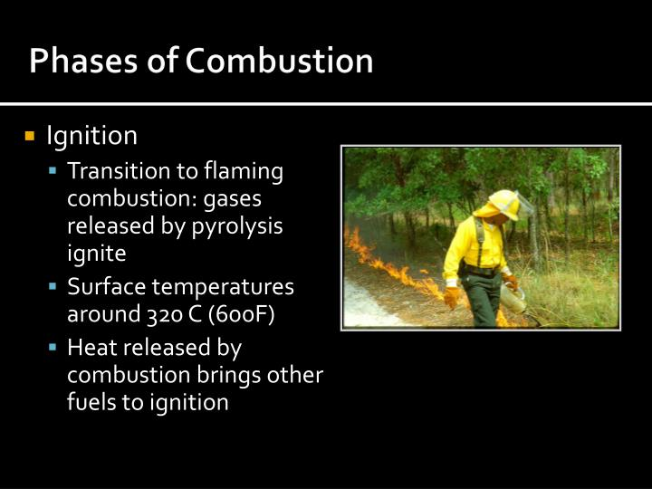 Phases of Combustion