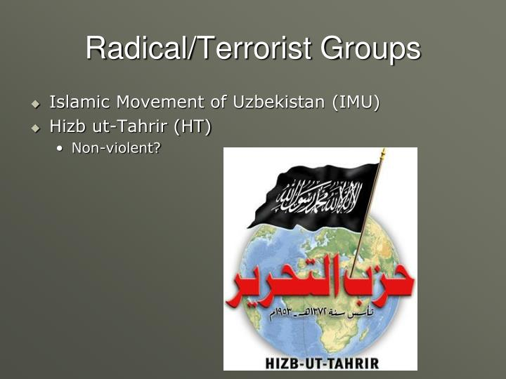 Radical/Terrorist Groups