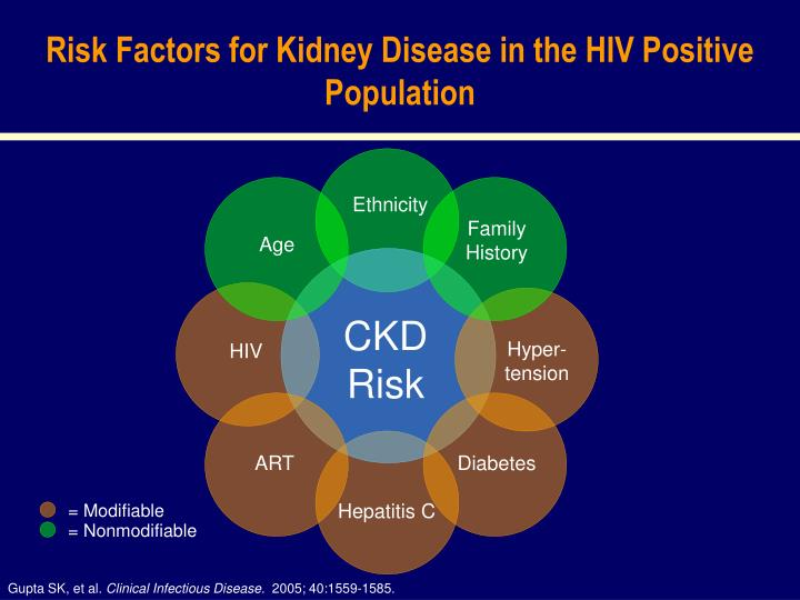 Risk Factors for Kidney Disease in the HIV Positive Population