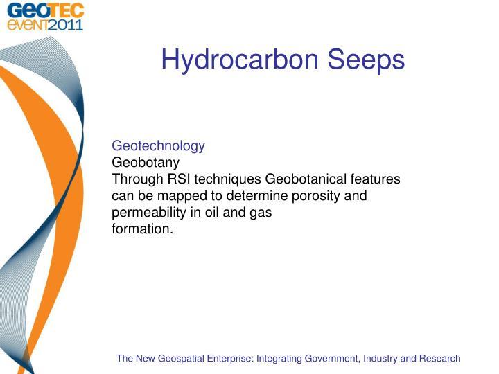 Hydrocarbon Seeps