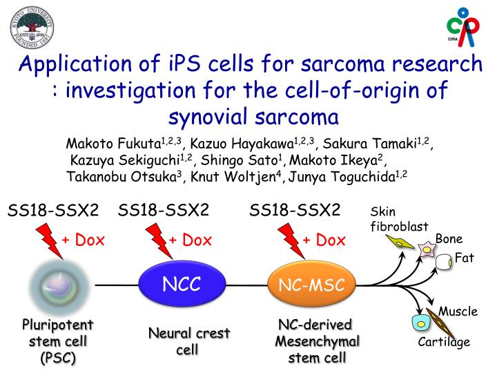 Application of iPS cells for sarcoma research