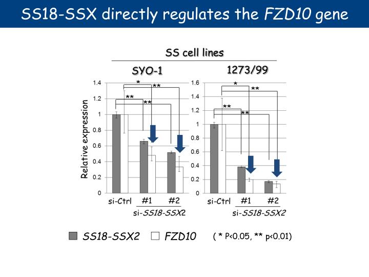 SS18-SSX directly regulates the
