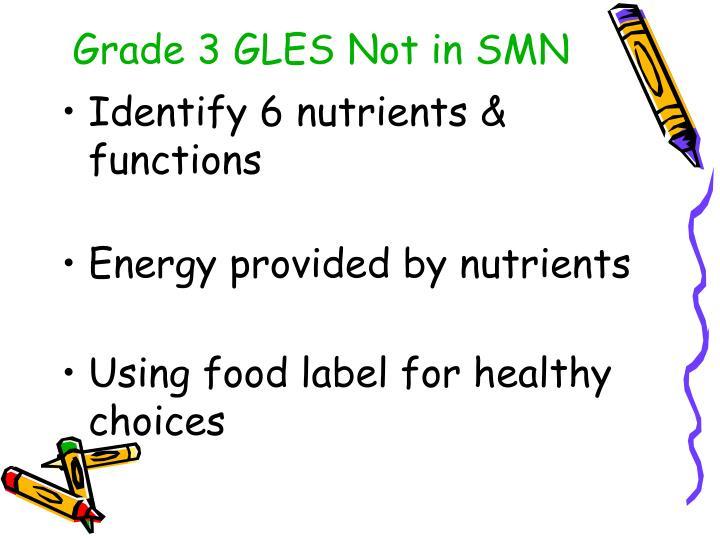 Grade 3 GLES Not in SMN