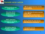 domestic sector outlook