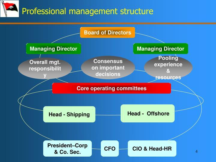 Professional management structure