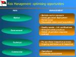 risk management optimising opportunities