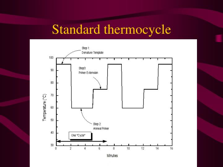 Standard thermocycle