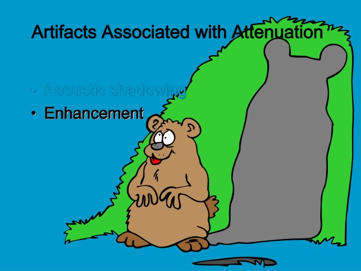 Artifacts Associated with Attenuation