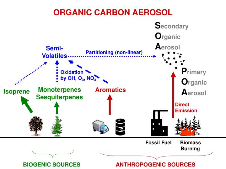 ORGANIC CARBON AEROSOL