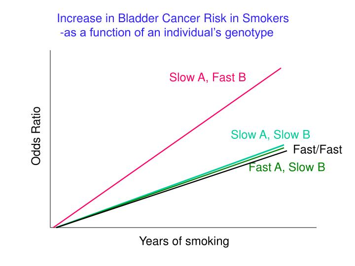Increase in Bladder Cancer Risk in Smokers