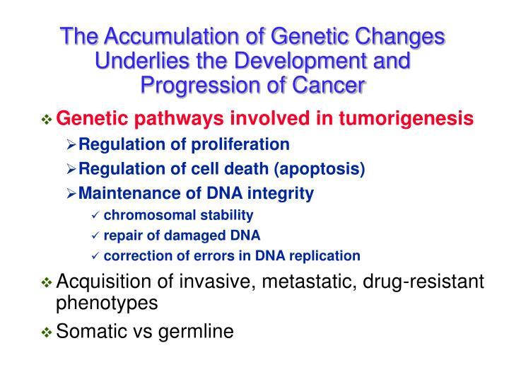 The Accumulation of Genetic Changes Underlies the Development and Progression of Cancer