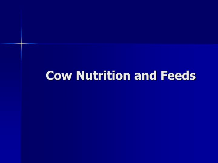 cow nutrition and feeds
