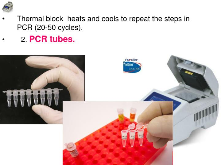 Thermal block  heats and cools to repeat the steps in PCR (20-50 cycles).
