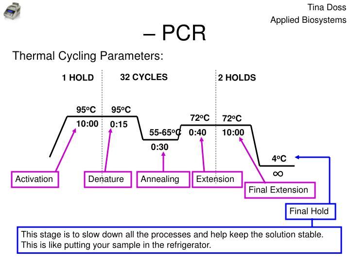 – PCR