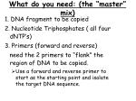 what do you need the master mix