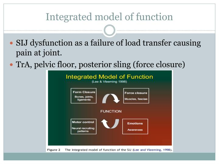 Integrated model of function