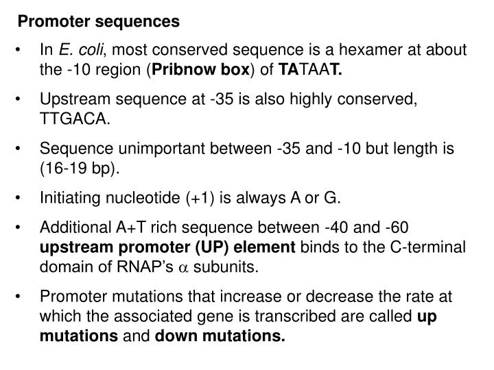 Promoter sequences