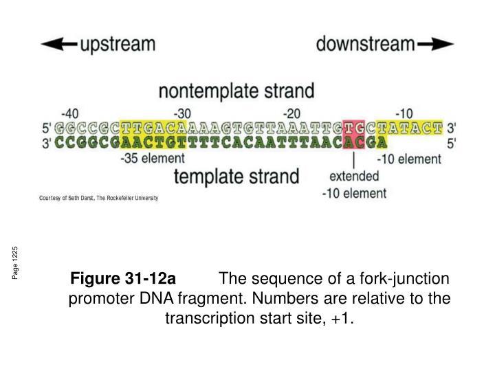 Figure 31-12a
