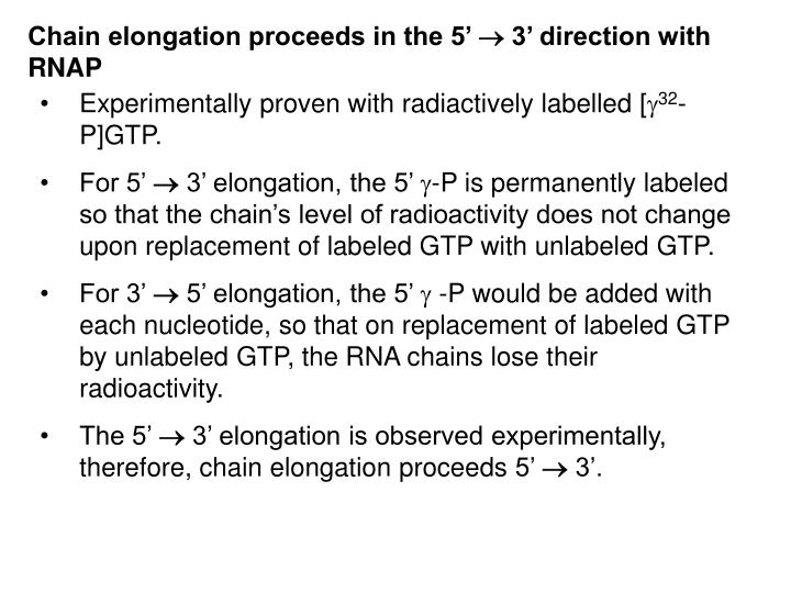 Chain elongation proceeds in the 5'