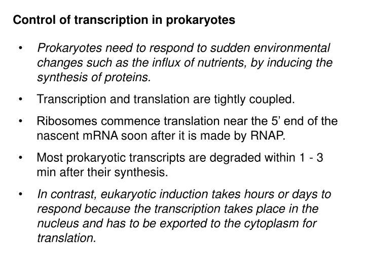 Control of transcription in prokaryotes
