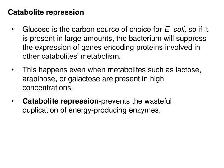 Catabolite repression