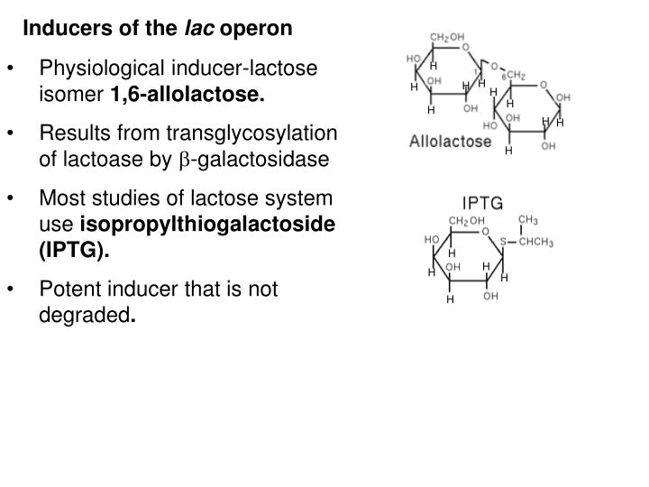 Inducers of the