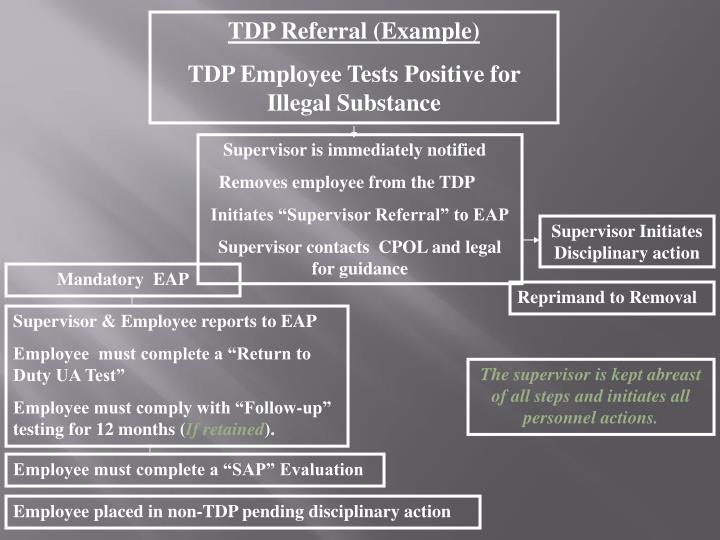 TDP Referral (Example)