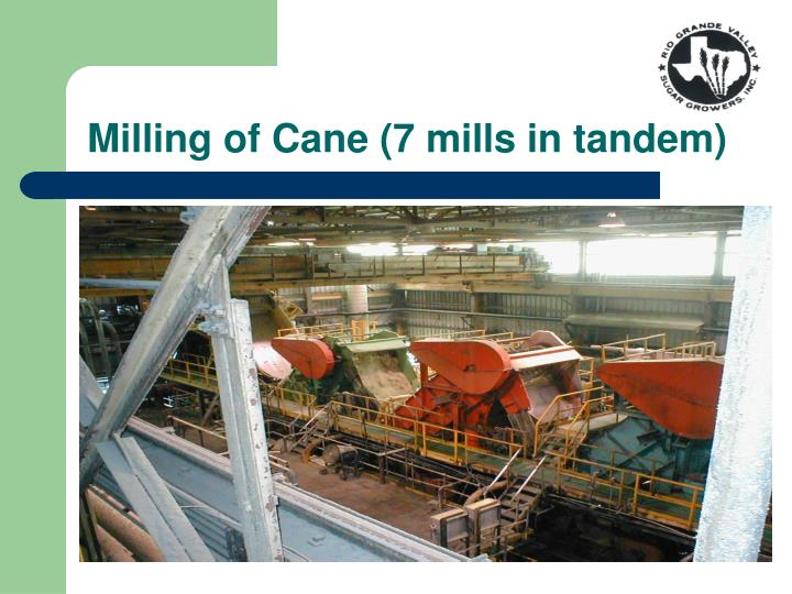 Milling of Cane (7 mills in tandem)