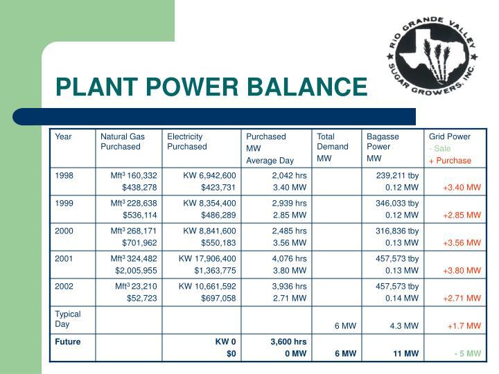 PLANT POWER BALANCE
