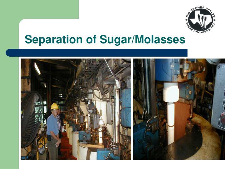 Separation of Sugar/Molasses