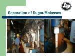 separation of sugar molasses