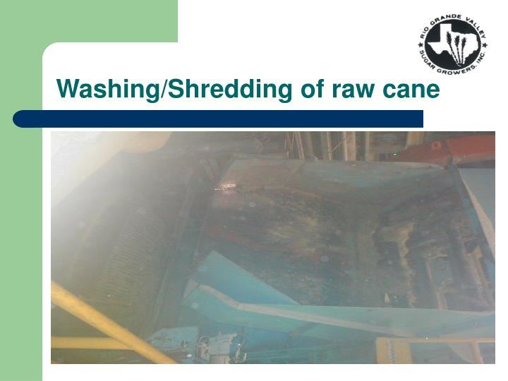 Washing/Shredding of raw cane