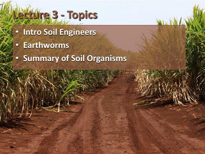 Lecture 3 - Topics