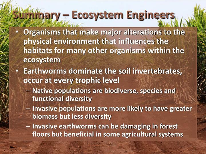 Summary – Ecosystem Engineers
