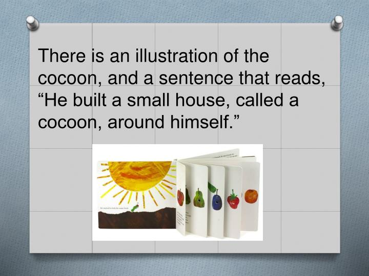 """There is an illustration of the cocoon, and a sentence that reads, """"He built a small house, called a cocoon, around himself."""""""