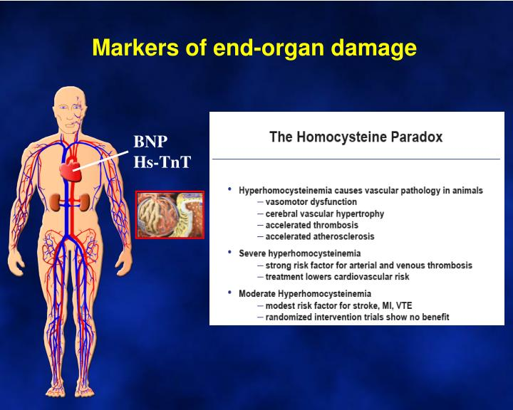 Markers of end-organ damage