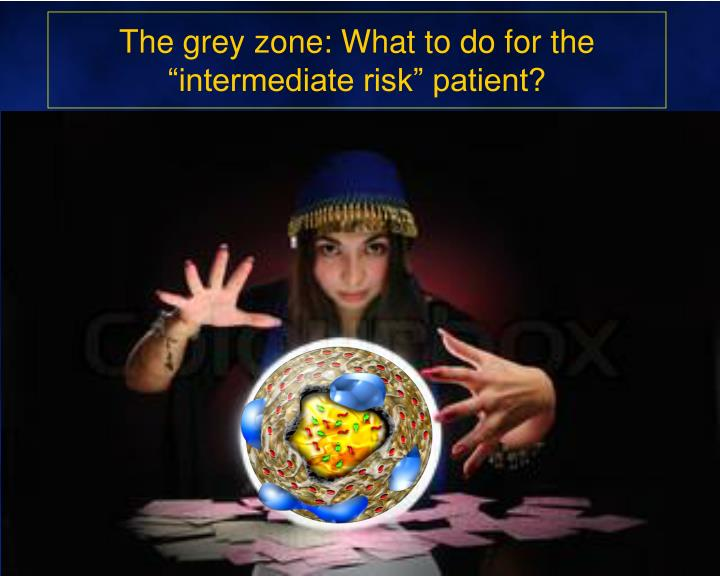 The grey zone what to do for the intermediate risk patient