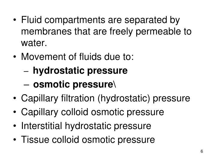 Fluid compartments are separated by membranes that are freely permeable to water.