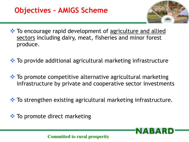 Objectives – AMIGS Scheme