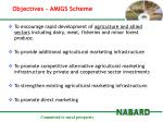 objectives amigs scheme