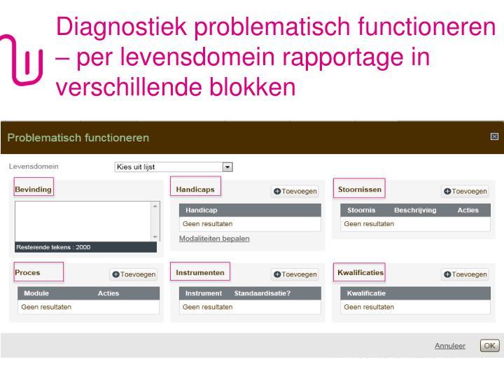 Diagnostiek problematisch functioneren – per levensdomein rapportage in verschillende blokken