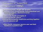 priniciples of supported employment asenz