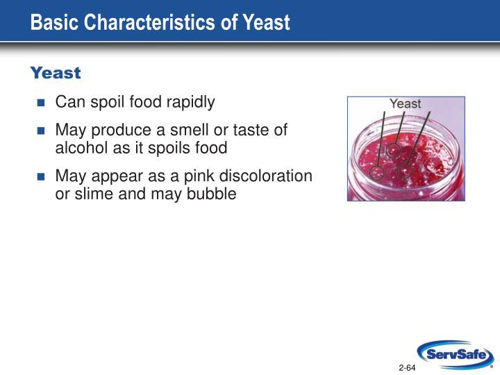 Basic Characteristics of Yeast